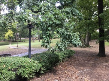 """Many of the parks created or enhanced as part of Mayor George Ward's """"Birmingham Beautiful"""" campaign are still in use today, including Rhodes Park. (City of Birmingham Park and Recreation)"""