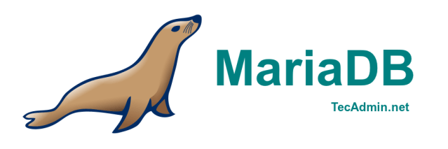 How To Install MariaDB on Ubuntu 18.04 LTS