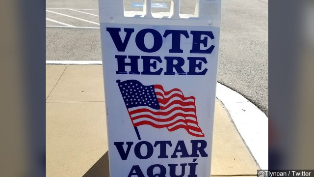Texas Primary Election