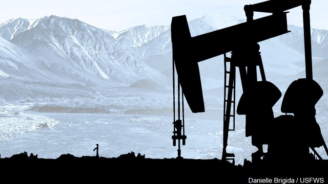 Biden to suspend oil and gas drilling leases in Arctic refuge