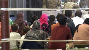 Over 4,400 Afghan refugees to be resettled in Texas, nearly 300 in NM