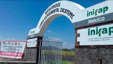 Photo of Termina huelga en el Instituto Nacional de Investigaciones Forestales