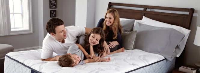 Looking For The Perfect Mattress