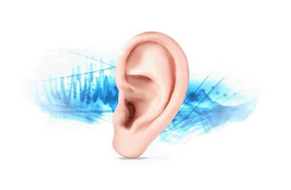 Причиной звона в ушах может быть паразит или насекомое