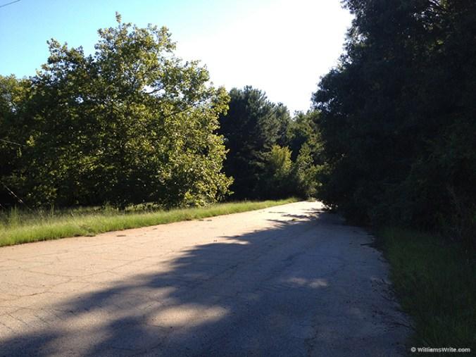 Old Road across from Handley House (LaGrange, Georgia - 9 September 2012)