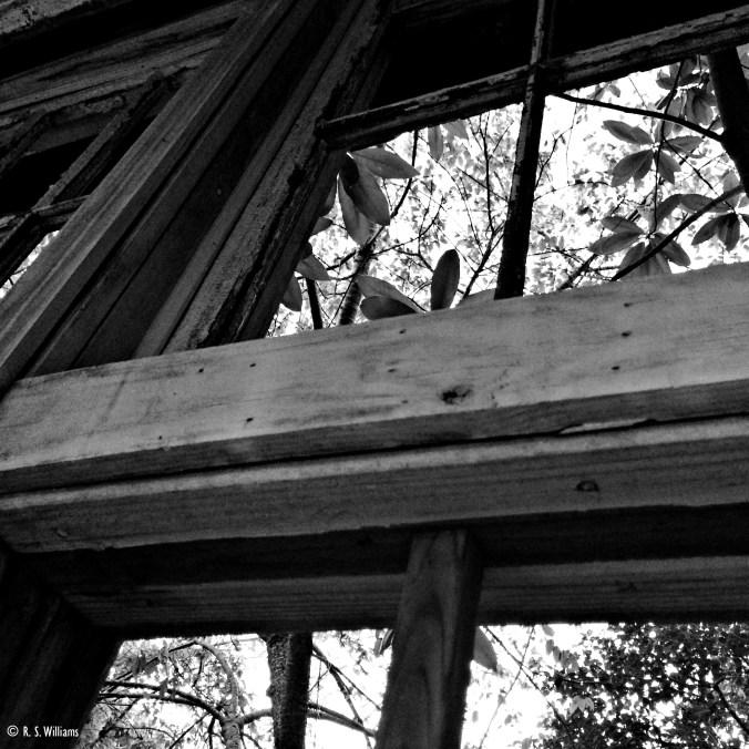 DocSpeirs_WindowBW_2014-10-24 18.53.02-1COPY