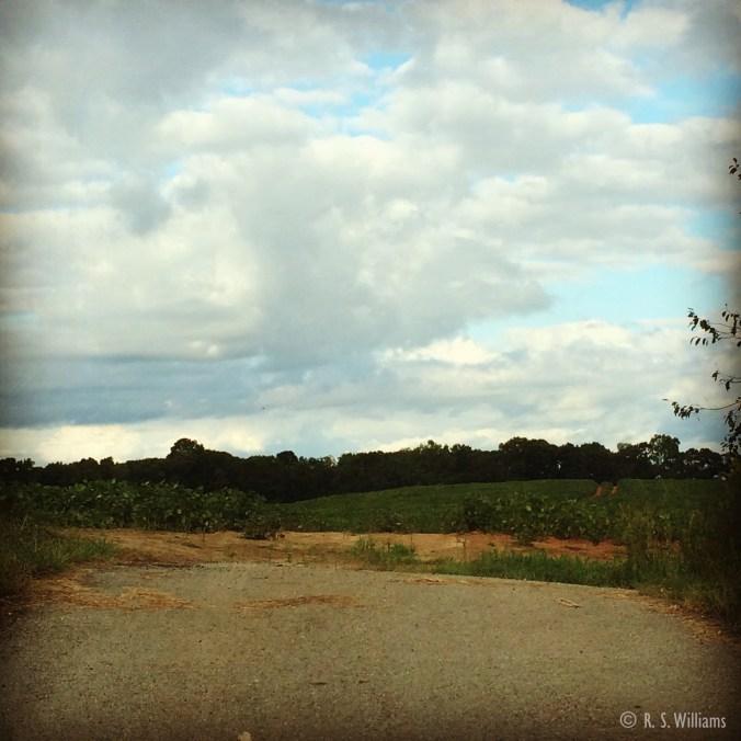 2014-09-25_COPY_18.00.52-1