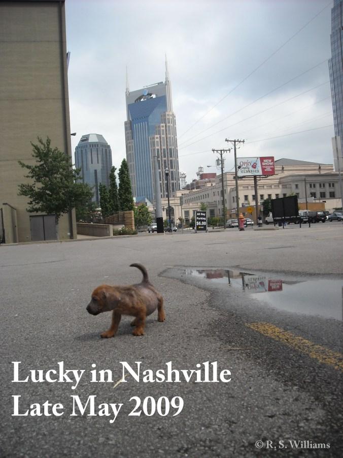 luckyindowntownnashville_copy_latemay2009