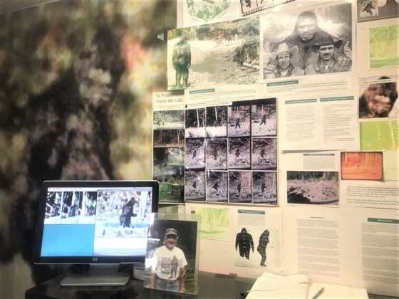 Photographs, articles, and graphs of Bigfoot serve as evidence for his existence