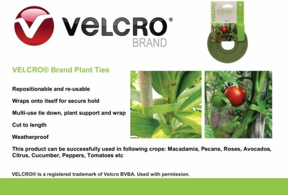 VELCRO green ties
