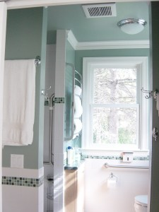 photo of bathroom with grab bar in shower and next to toilet