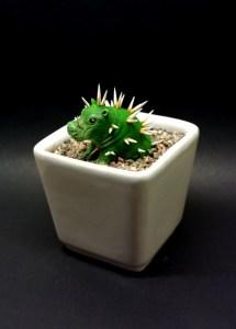 Hippo-pot-cactus