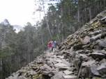"""durch den """"Schwarzwald"""""""