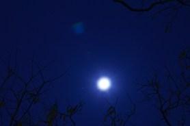 Le bleu de la nuit de Tainan
