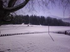 Ausblick von der Hütte aus