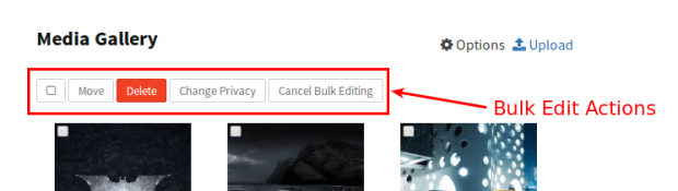 bulk edit actions