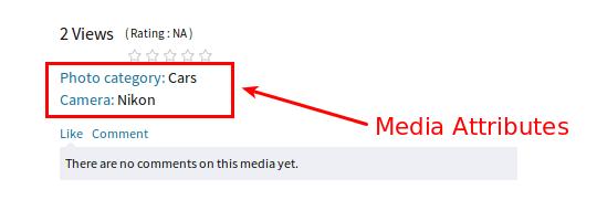 rtmedia-media-attributes-view