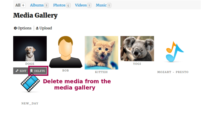 Delete from media gallery