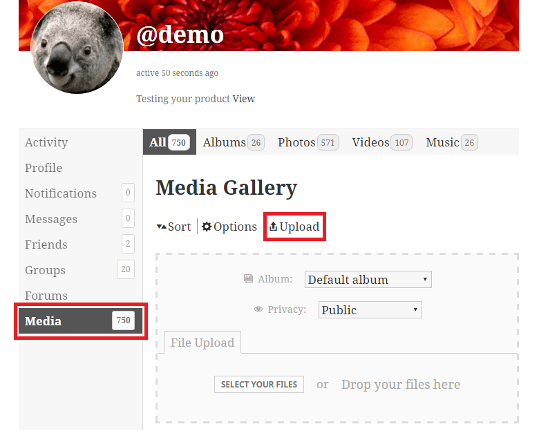 Upload media from Media tab in your profile