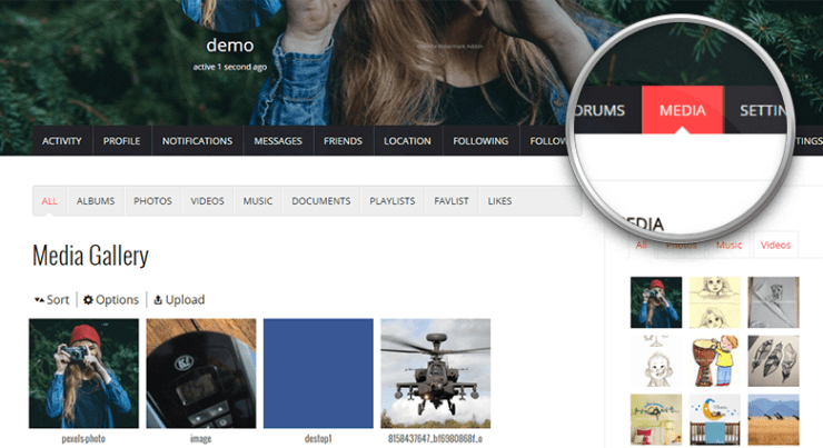 rtDating with rtMedia plugin