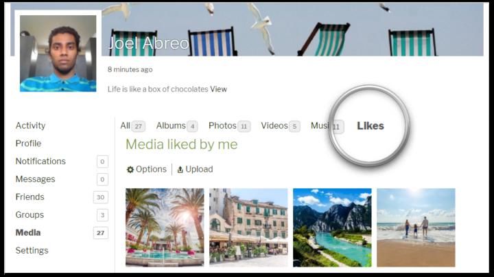 rtMedia Likes addon Screenshot BuddyPress media