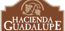 hacienda_guadalupe_hotel_logo_501884b90ada8c18ed38b92c27d59de1