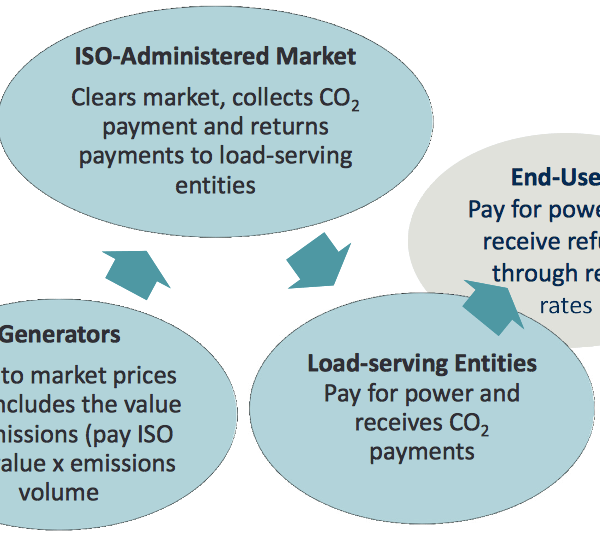 Flow of Emissions Value (Source: The Brattle Group)