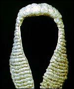 judge-wig