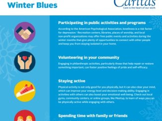 winter blues infographic