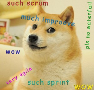 Agile Scrum Doge