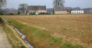 Dierenpension Winterswijk