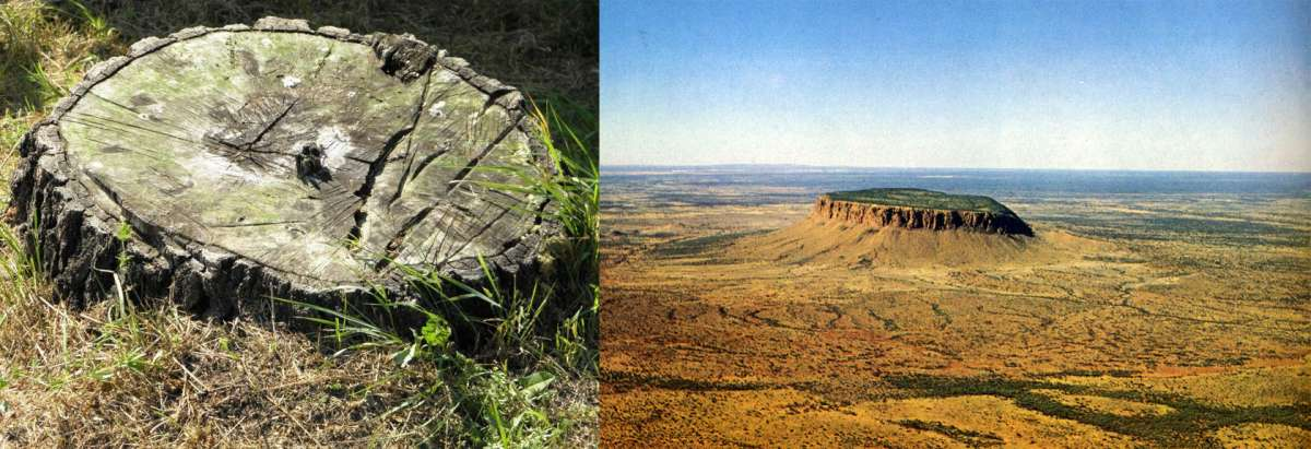 Облик Земли ещё недавно был совсем другим