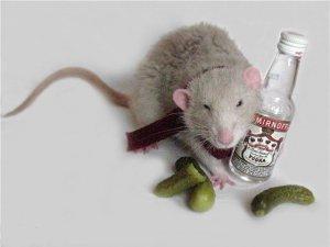 алкоголь опыты ученых