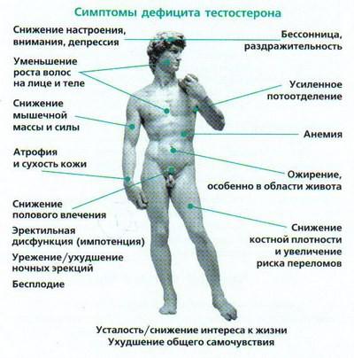 Как проявляется гипогонадизм у детей и подростков. Знаете ли вы о симптомах и методах лечения гипогонадизма у мальчиков