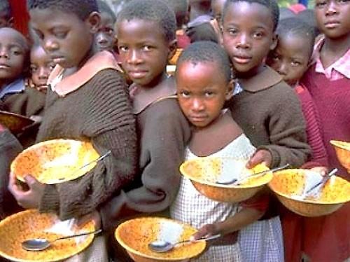 Мир стоит на грани продовольственного кризиса
