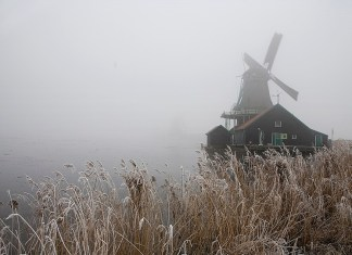 Нидерланды в тумане