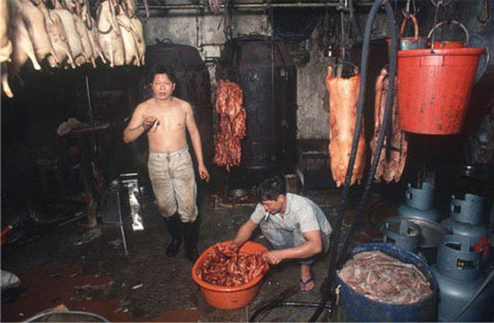 Зрелище пищевого комбината Коулуна — отличный повод обратиться в вегетарианство… Одной из основных статей дохода тамошнего пищепрома было, к слову, собачье мясо (фото Greg Girard).