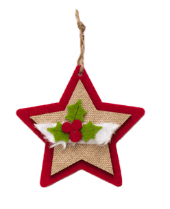 Rubbernecker Blog christmas-july-star-2