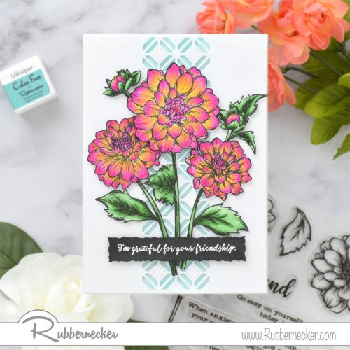 Rubbernecker Blog Dahlia-Friendship-Card-by-Annie-Williams-for-Rubbernecker-500x500