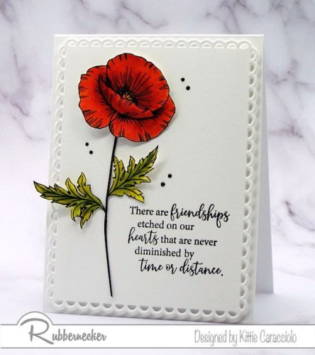 Rubbernecker Blog KC-Rubbernecker-3406-Precious-Poppies-1-right-444x500