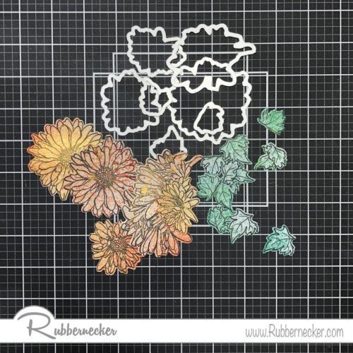 Rubbernecker Blog IMG-0923-500x500