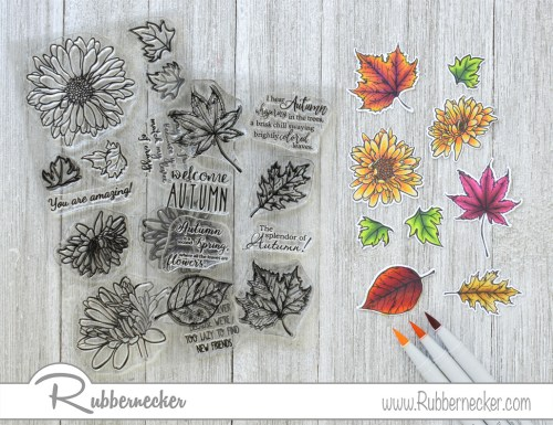Rubbernecker Blog Golden-Autumn-Blooms-Card-by-Annie-Williams-for-Rubbernecker-Coloring-500x385
