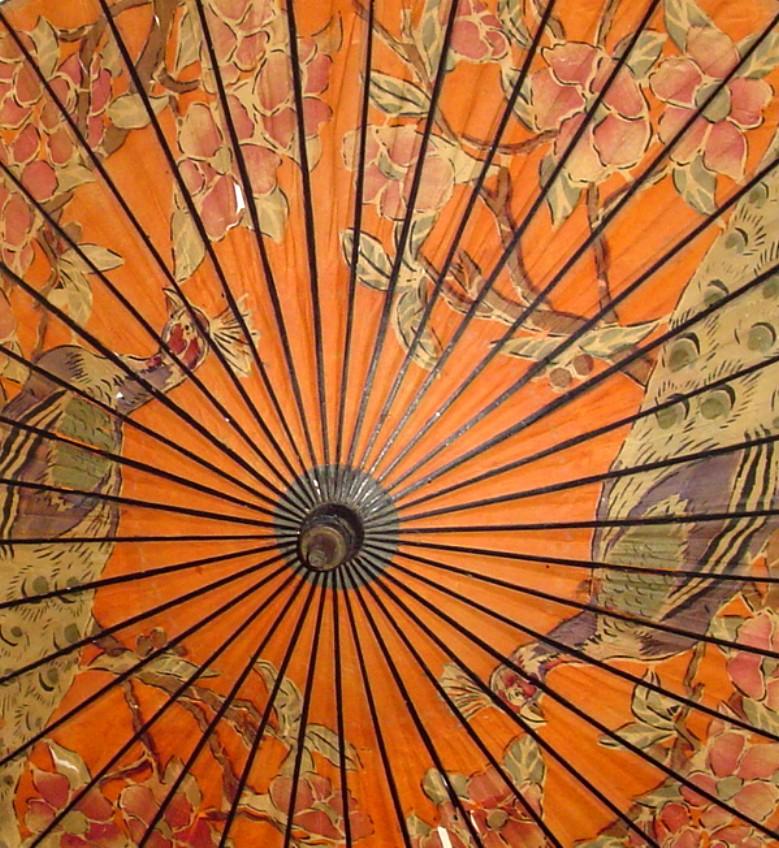 My Japanese paper umbrella - Wasaga (2/6)