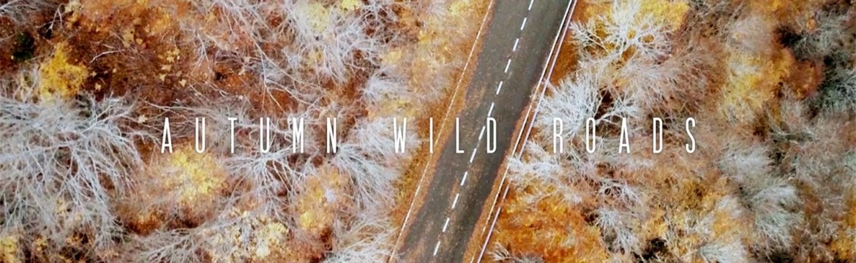 Autumn wild roads
