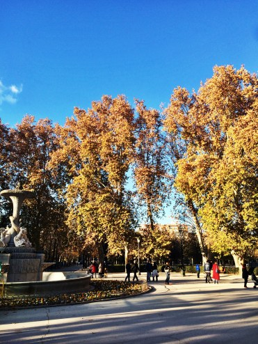 Beautiful autumnal colors in El Retiro.