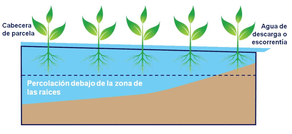 La escorrentía de aguas superficiales y la percolación debajo de la zona de raíces supone un pobre eficiencia de aplicación