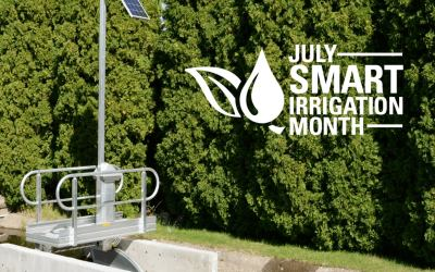 How Rubicon's Innovative Technology is Supporting the Objectives of Smart Irrigation Month