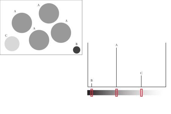Aprende qué es y cómo emplear el histograma en Fotografía.