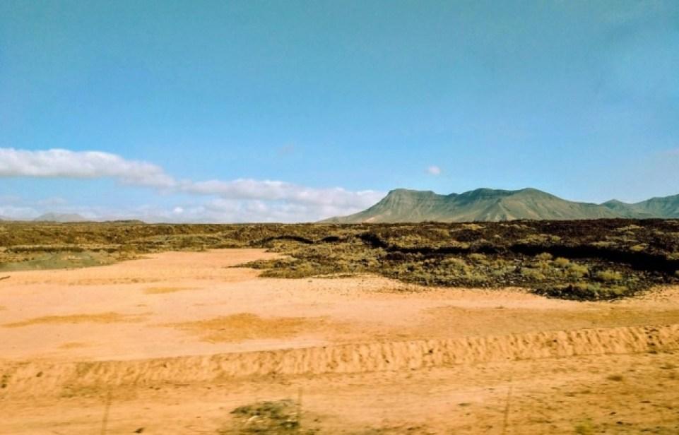 Всесвітній день боротьби з опустелюванням та посухами