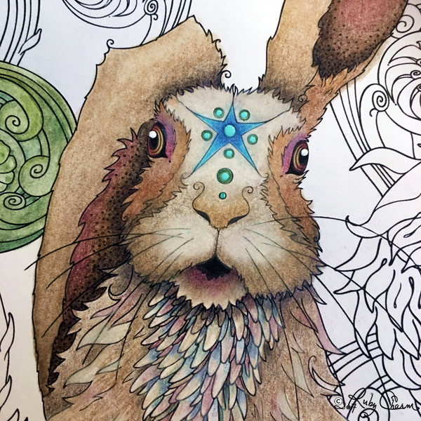 Close up of the Spring Rabbit, March Hare by Ruby Charm Colors